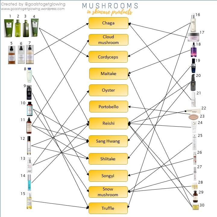 gtgg Mushroom Infographic 2
