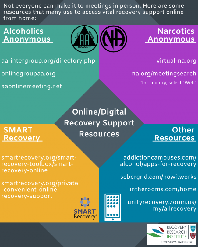 This image has an empty alt attribute; its file name is digital-recovery-support-infographic.png